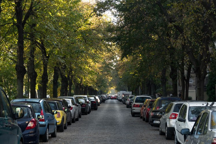 bukarest-street-cars-trees